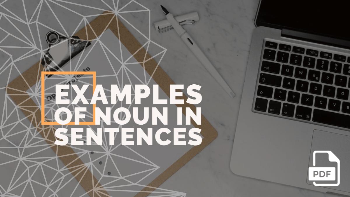 10+ Examples of Noun in Sentences [PDF]