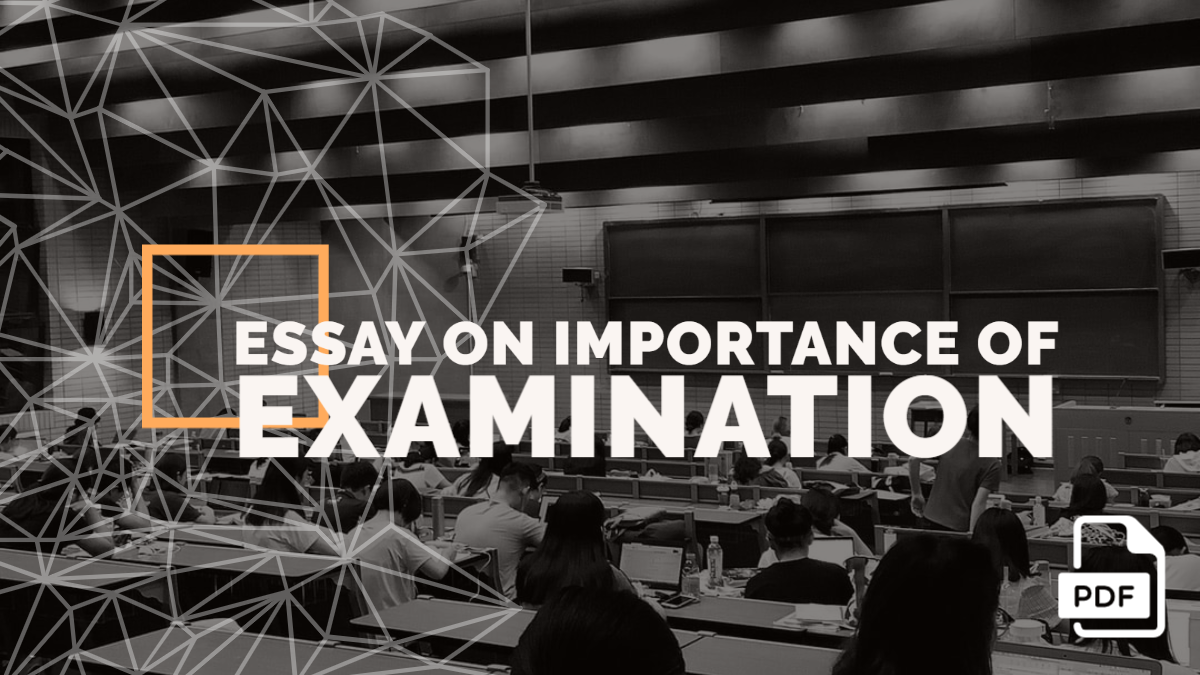 Essay on Importance of Examination in Student's Life [With PDF]