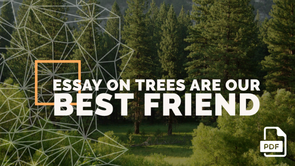 Essay on Trees Are Our Best Friend feature image