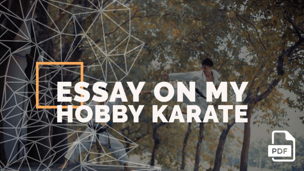 essay on karate