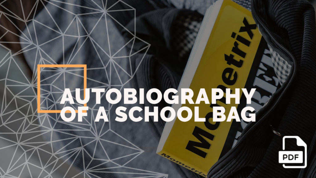 Autobiography of a School Bag feature image