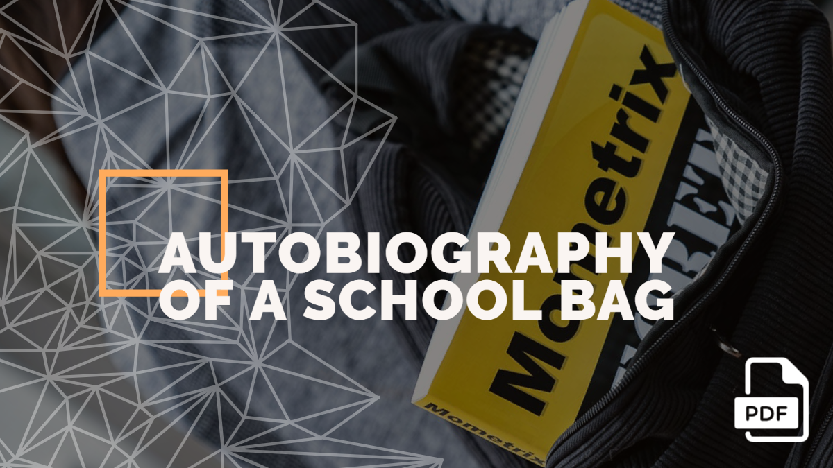 Autobiography of a School Bag [PDF]