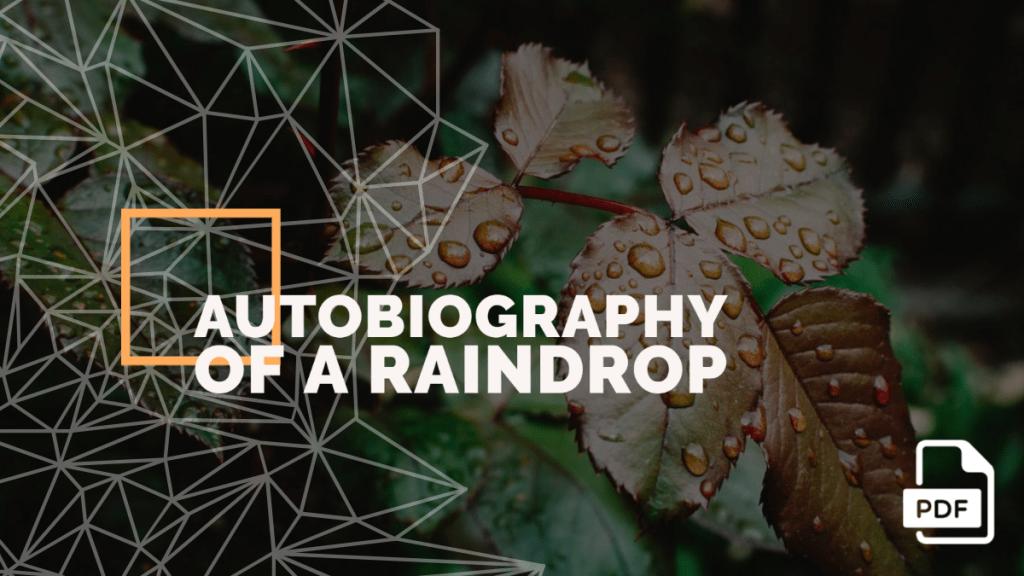 raindrop feature image
