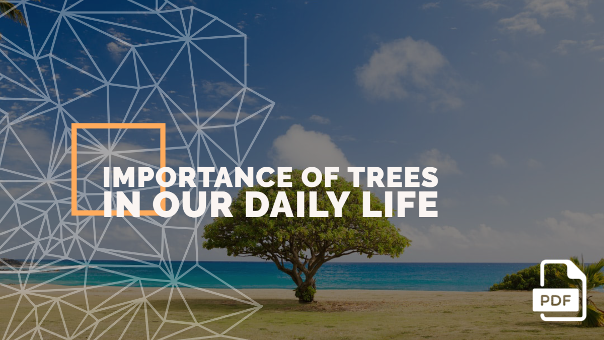 An Essay on the Importance Of Trees In Our Daily Life [With PDF]