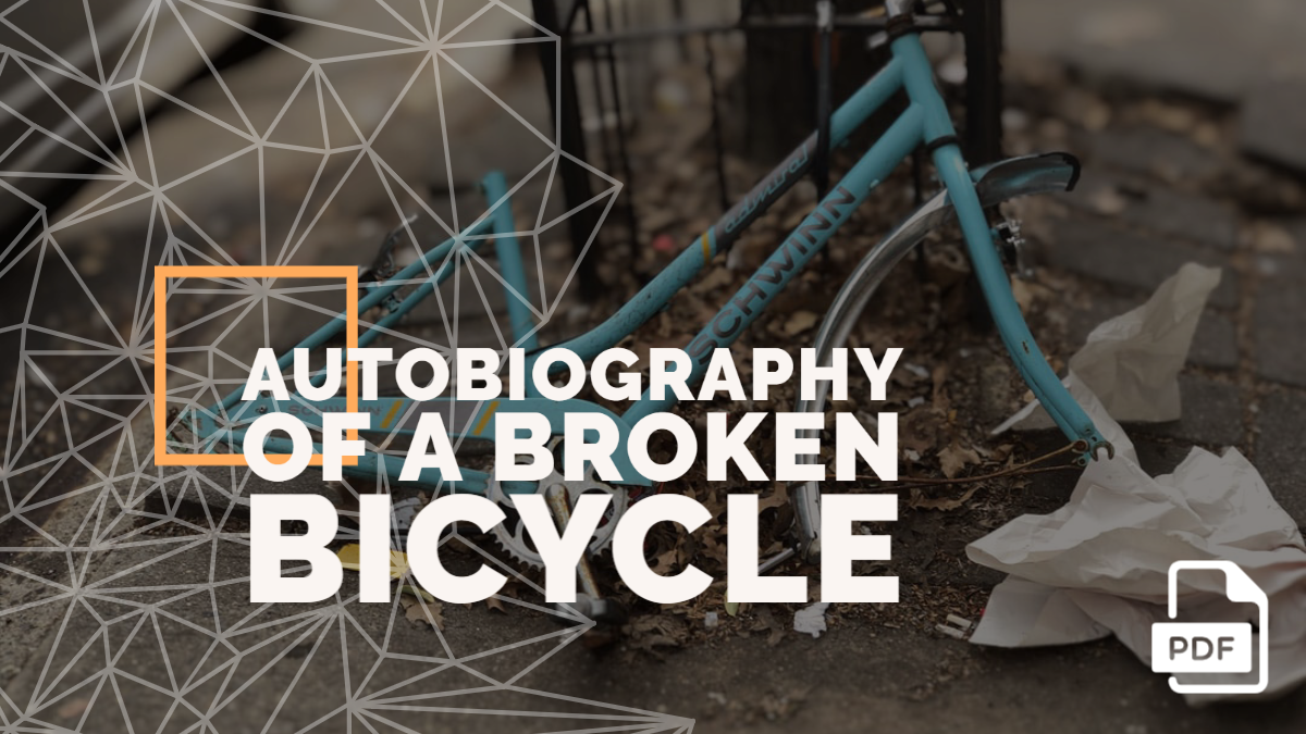 An Autobiography of a Broken Bicycle [PDF]