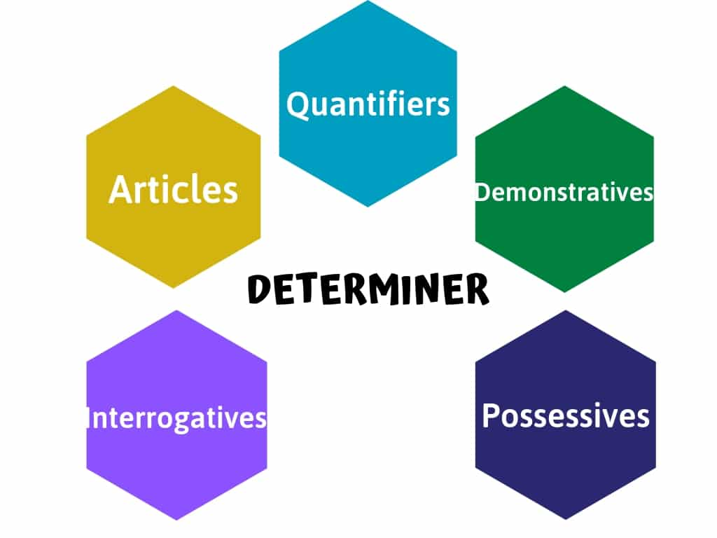 Determiners in English Grammar with Examples [PDF]