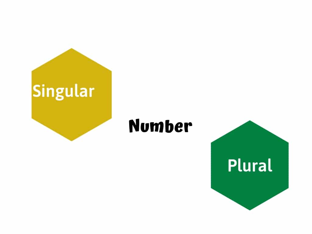 Number in English Grammar with Examples [PDF]