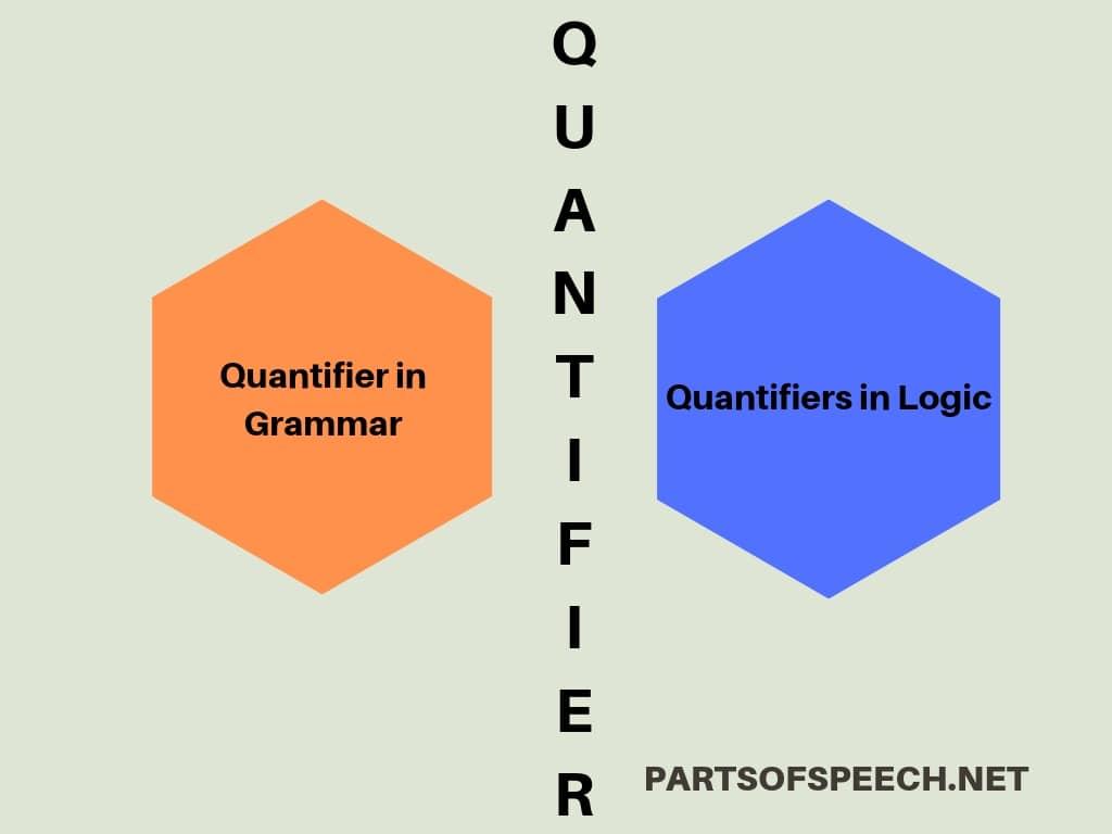 types of quantifiers