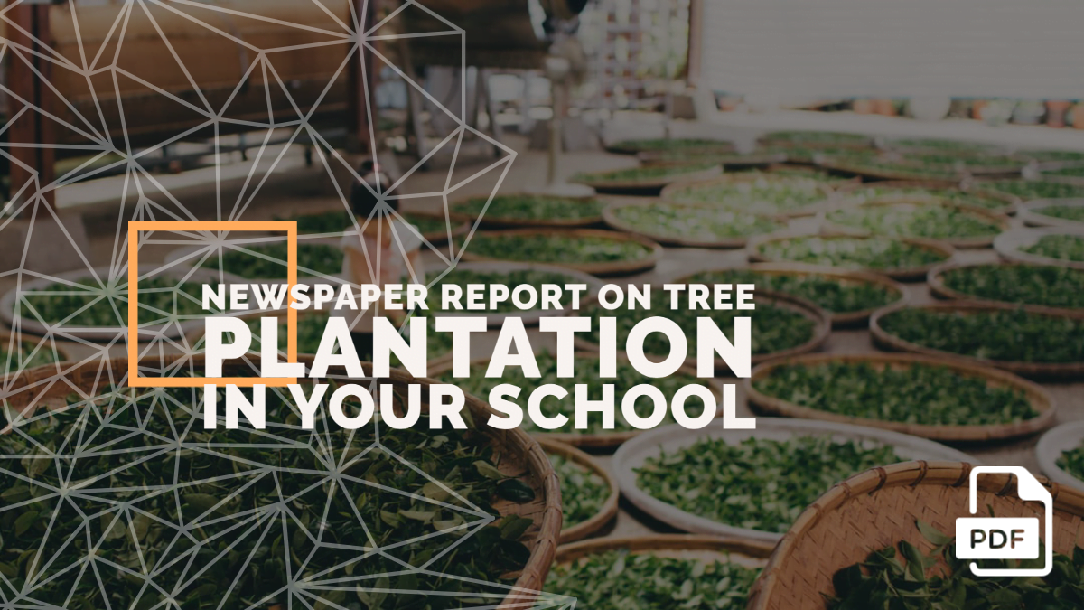 Write a Newspaper Report on Tree Plantation in Your School [PDF]