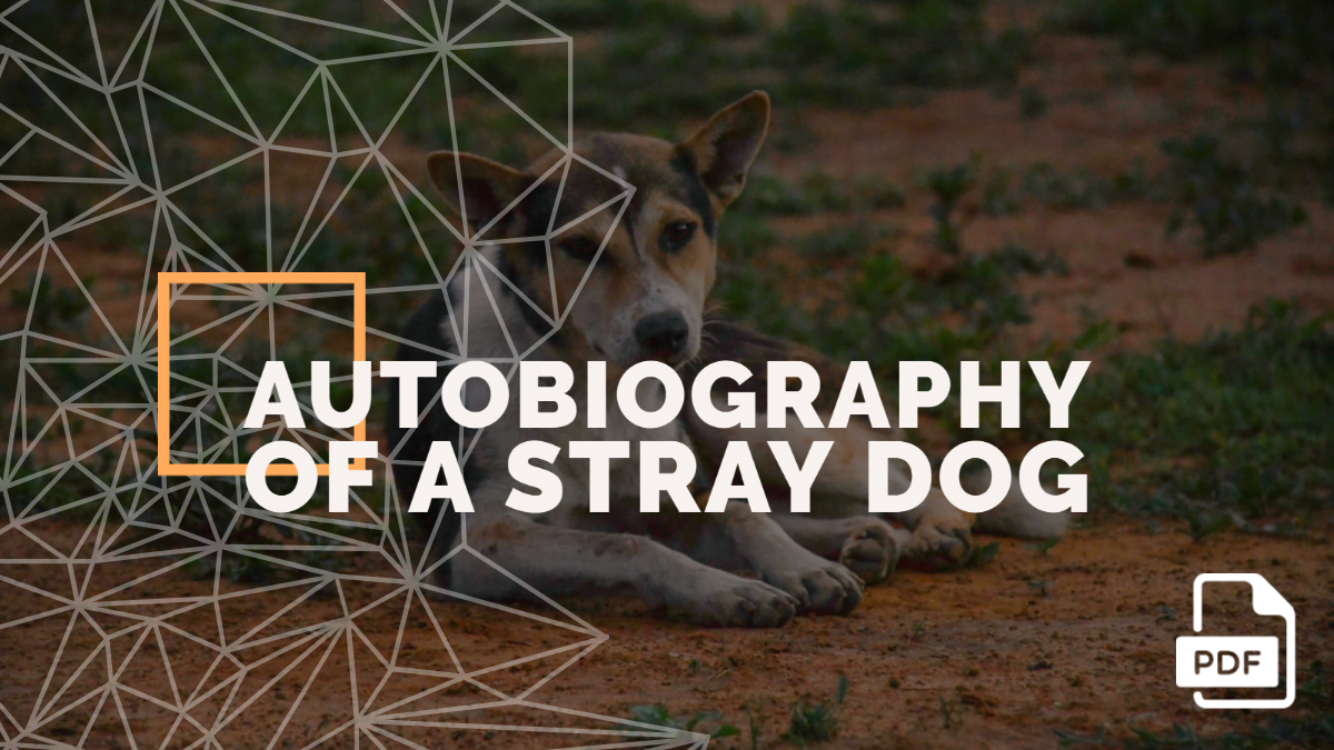 Autobiography of a Street or Stray Dog [With PDF]