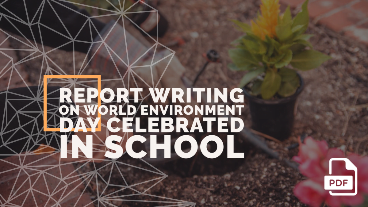 Report Writing on World Environment Day Celebrated in Your School [With PDF]