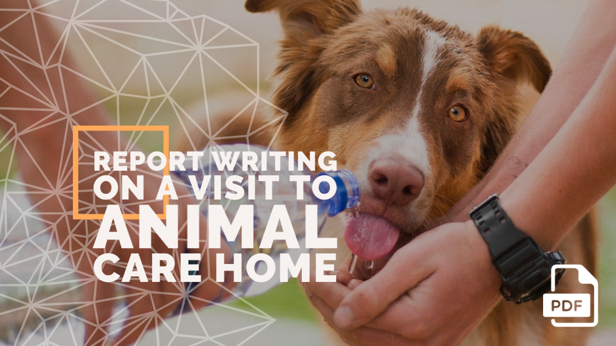 Report Writing on a Visit to Animal Care Home [With PDF]