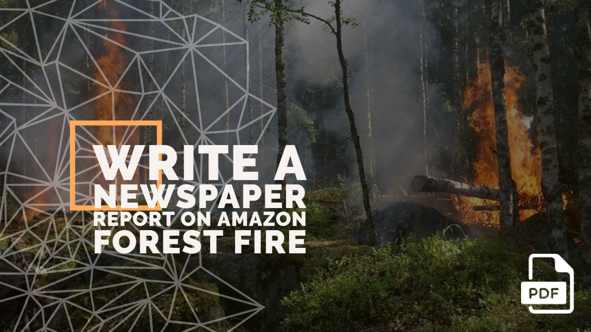 Write a Newspaper Report on Amazon Forest Fire [With PDF]