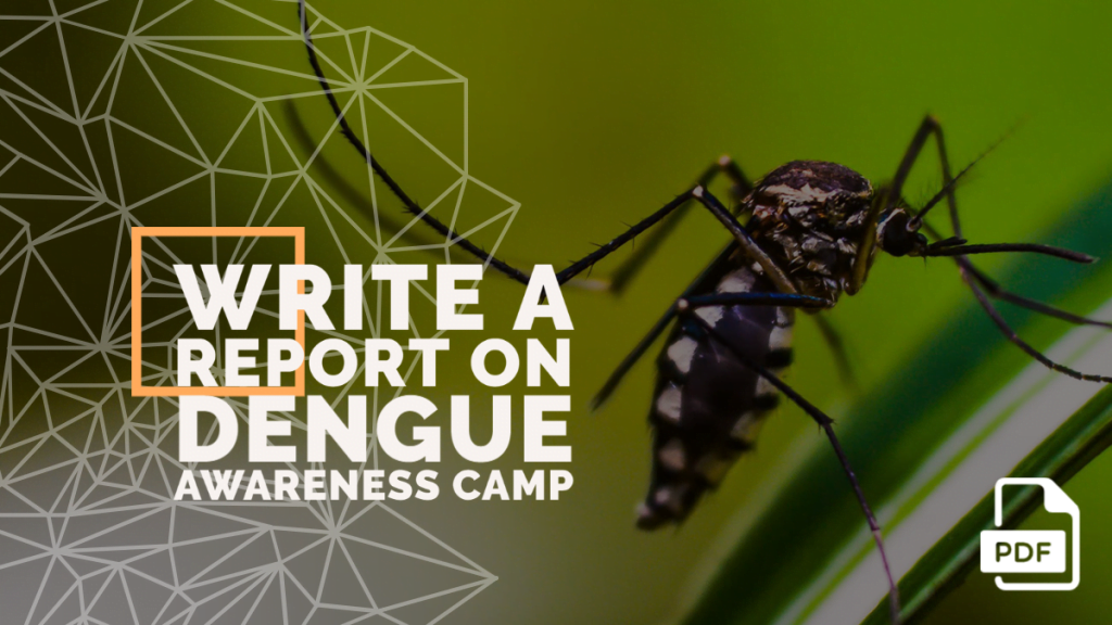feature image of write a report on dengue awareness camp