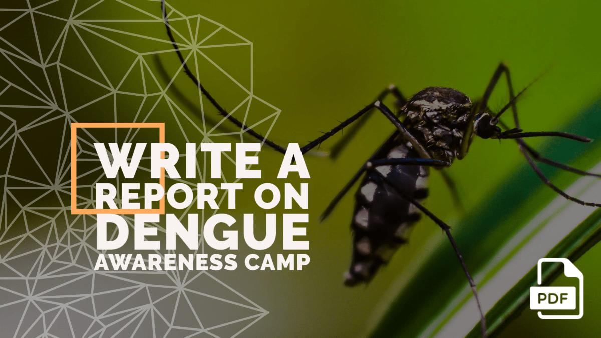 Write a Report on Dengue Awareness Camp [PDF]