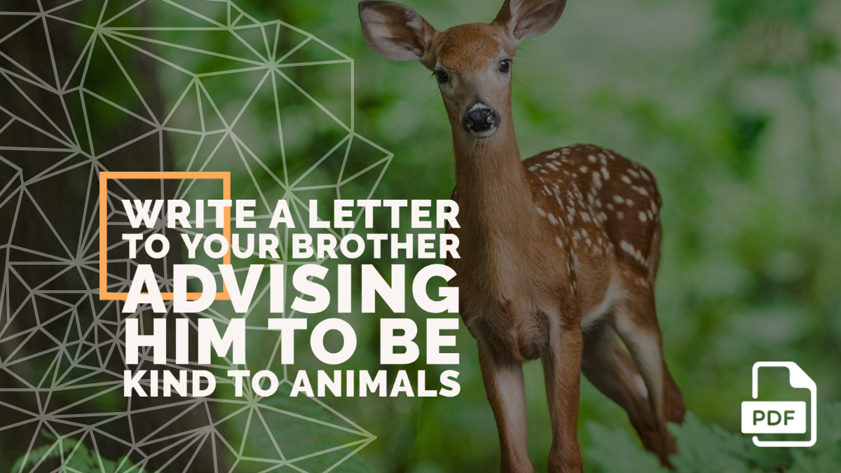 Write a Letter to Your Brother Advising Him to be Kind to Animals [With PDF]