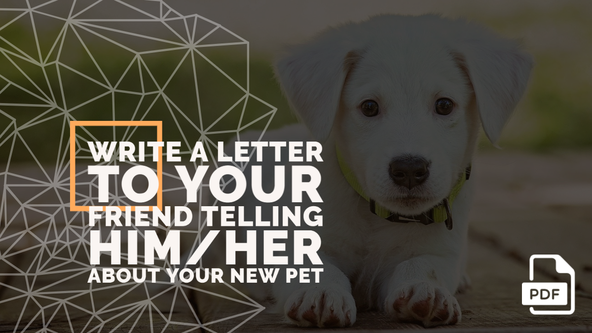 Write a Letter to Your Friend Telling Him/Her about your New Pet [With PDF]