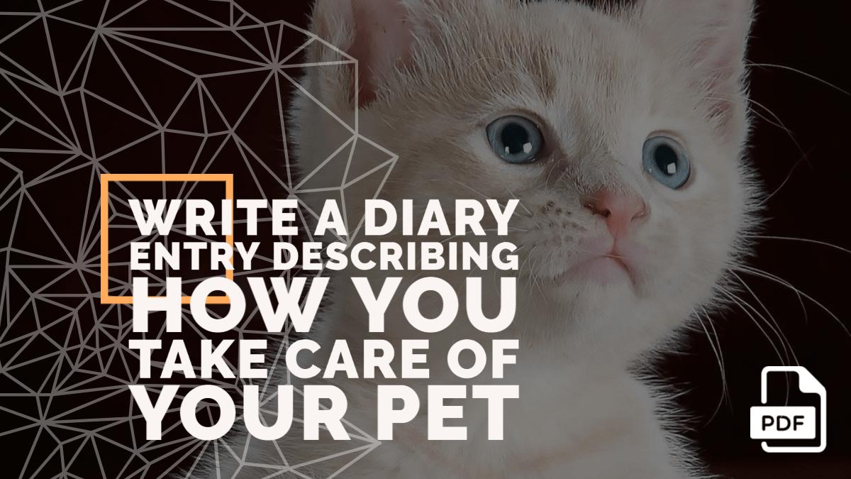 Write a Diary Entry Describing How You Take Care of Your Pet