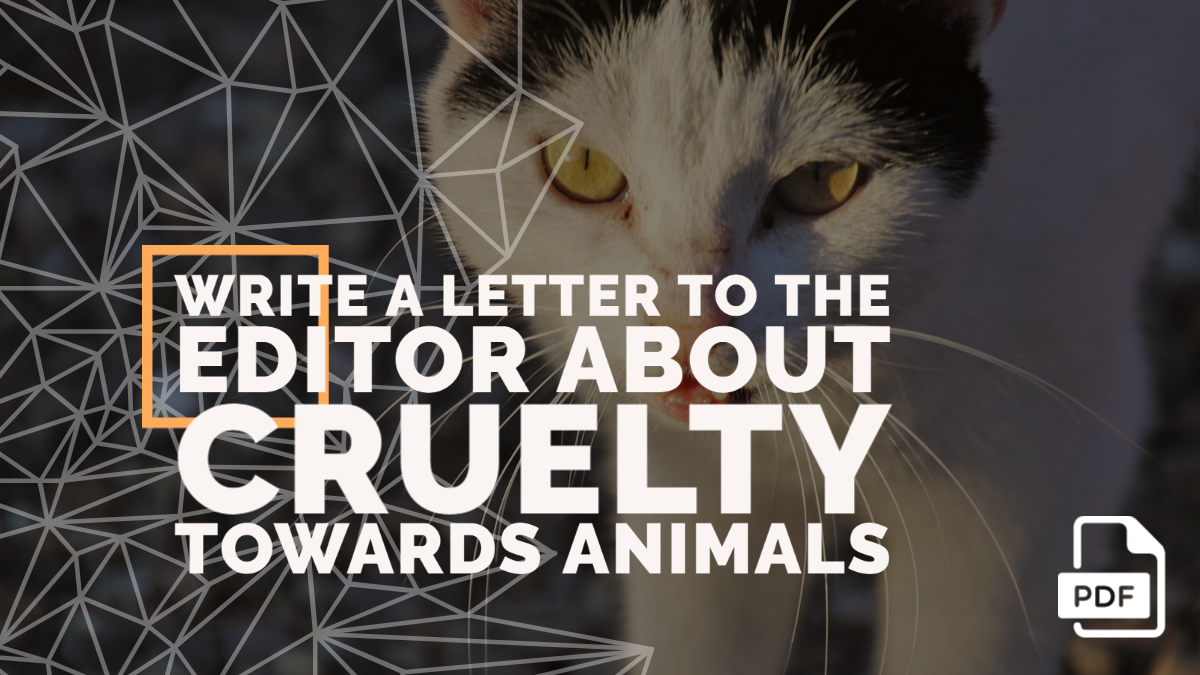 Write a Letter to the Editor about Cruelty Towards Animals