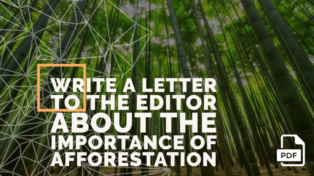 Feature image of Letter to the Editor about the Importance of Afforestation