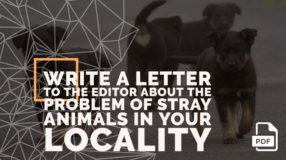 Write a Letter to the Editor about the Problem of Stray Animals in your Locality