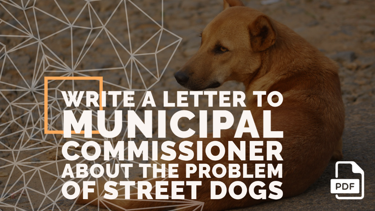 Write a Letter to Municipal Commissioner about the Problem of Street Dogs